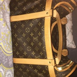 Louis Vuitton dog carrier 50 bag
